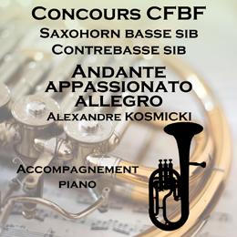 ANDANTE APPASSIONATO ALLEGRO pour Saxhorn
